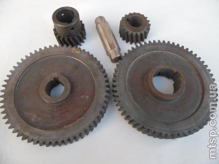 Шестерни мотор-редуктора маслообразователя